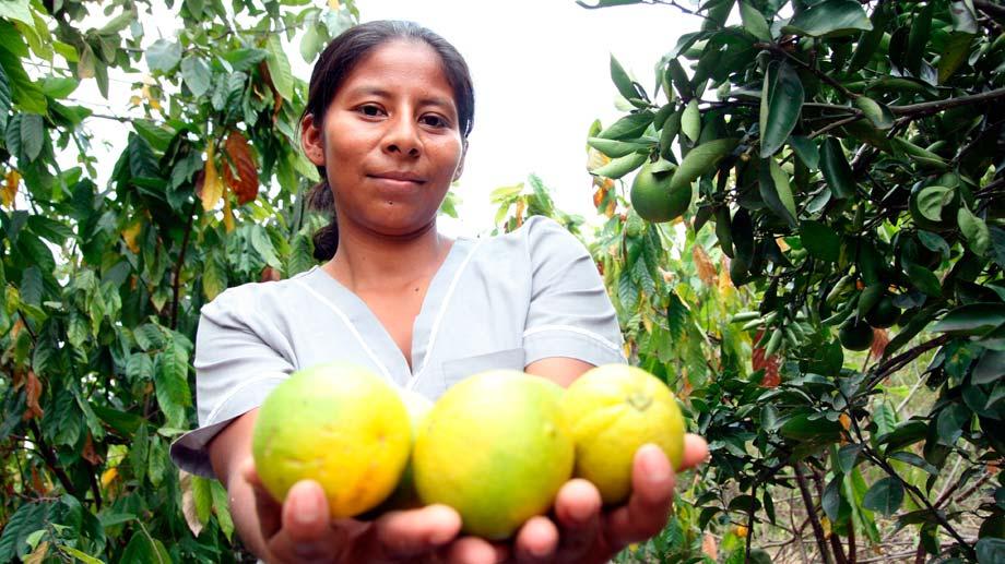 Fruta encapsulada para comunidades vulnerables en Colombia
